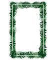 Green plants exotic leaves banana leaf areca