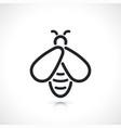 honey bee thin line icon vector image