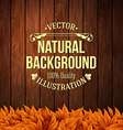 Natural background with wooden board and autumn vector image vector image