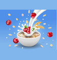 oat flakes with cranberry oatmeal in milk vector image vector image