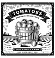 retro tomato harvest label with landscape vector image vector image
