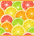 seamless pattern from citrus slices - lime lemon vector image vector image