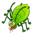 aphid pest vector image vector image