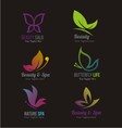 butterfly logos vector image