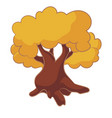 cartoon tree with yellow leaves oak isolated on vector image vector image