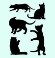 cute cats and kittens gesture animal silhouette vector image vector image