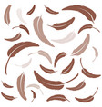 feather icon template vector image
