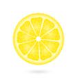 Lemon icon on a white vector image