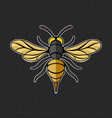 hornet logo template vector image vector image