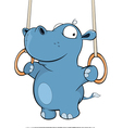 little hippo performing an Iron Cross Cartoon vector image