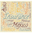 Mexican Insurance How To Choose A Plan text vector image vector image