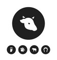 set of 5 editable zoo icons includes symbols such vector image