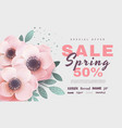 spring sale with flowers vector image vector image