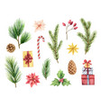 watercolor christmas set with fir branches vector image vector image