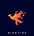 bird fire template vector image