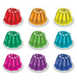 colorful gelatin jelly assortment vector image vector image