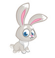 easter happy rabbit cartoon isolated vector image vector image