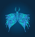 fantasy mystical butterfly blue color page vector image vector image
