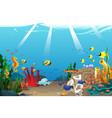 marine life vector image