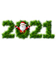 new year 2021 christmas tree branches isolated vector image vector image
