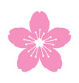 pink cherry blossom flower or sakura festival icon vector image vector image