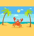 summer holiday vacation summertime crab coast vector image