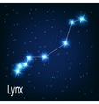 The constellation Lynx star in the night sky vector image