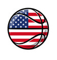 cartoon stylized basketball with usa flag vector image