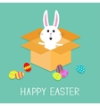 happy easter cute bunny rabbit and eggs open vector image vector image