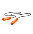 jump rope vector image vector image
