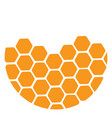 logo honeycombs a colored a vector image vector image
