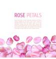 pink rose petals border vector image vector image