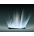 Rays of light Hologram vector image vector image