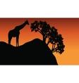 Giraffe silhouette in cliff scenery vector image