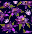 clematis purple flowers and leaves seamless vector image vector image
