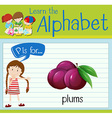 Flashcard letter P is for plumbs vector image vector image