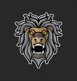 lion logo design template lion head icon vector image