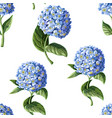 seamless pattern with hortensia vector image vector image