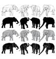 set elephant on a white background vector image
