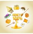 set honey icons vector image