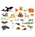 Set of cute cartoon animals snakes birds fishes vector image vector image