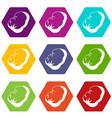 spleen icon set color hexahedron vector image vector image
