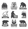 sport labels with animals vector image