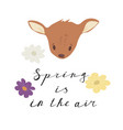 spring is in the air lettering inscription with vector image vector image