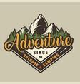 vintage outdoor recreation colorful label vector image
