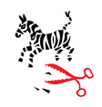 zebra cut with red scissors vector image vector image
