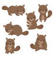 set of cute beavers set of cute beavers vector image