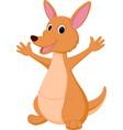 kangaroo cartoon vector image