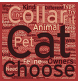 Different Kinds Of Cat Collars text background vector image vector image