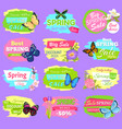 discount spring collection vector image vector image